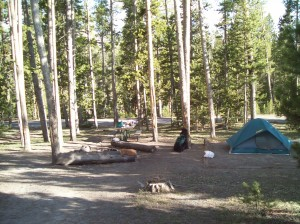 Our Yellowstone Campsite